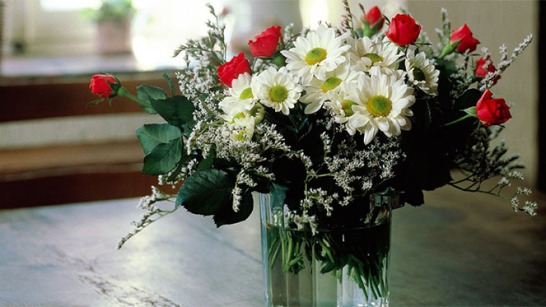 flores-dentro-de-casa